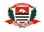 Apostila (PDF) - Concurso AGENTE POLICIAL da Polícia Civil SP - 2020