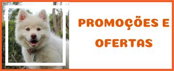 Aqui você encontra produtos promocionais e ofertas que são revisados todo mês!