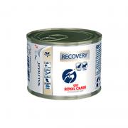 Ração Royal Canin Recovery - Alimento úmido em lata - 195 gr