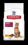 Ração Hill's Gatos Adulto - Cuidado Excelente