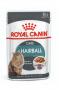 Sachê Royal Canin Hairball Care - 85g