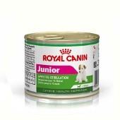 Ração Úmida Royal Canin - Raças Pequenas - Junior 195g