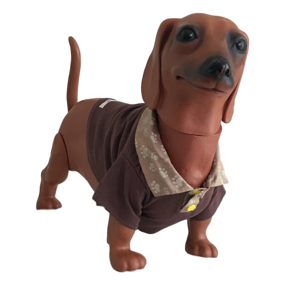 Úrsula Schmitt Moda Pet - Camiseta Gola Polo Para Cachorro Dedé b5f13c2b0f7