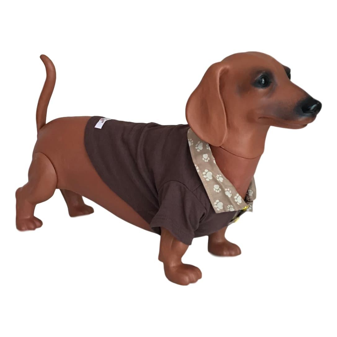 Camiseta Pet Marrom