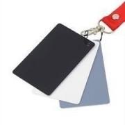 Cartão de Balanço Cinza 3 em 1