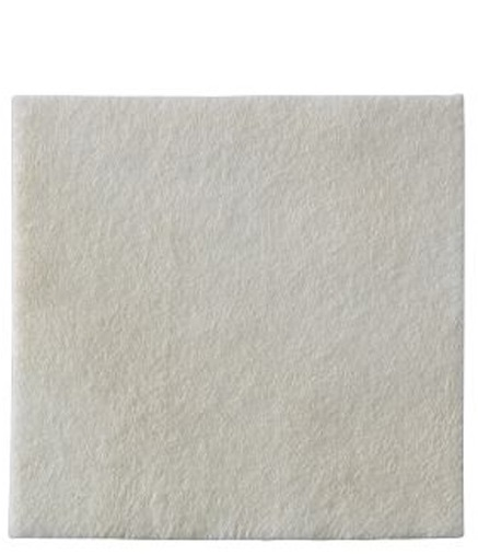 Biatain Alginato (seasorb) 10 X 10cm 3710 - (Coloplast)