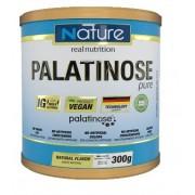 PALATINOSE - 300G - NATURE