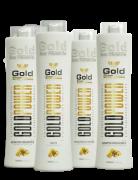 Cauterização e Reconstrução Profissional Gold Show 4x1000ml