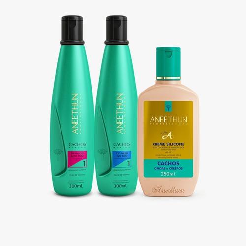 Aneethun Kit Cachos System Shampoo E Creme Para Cachos