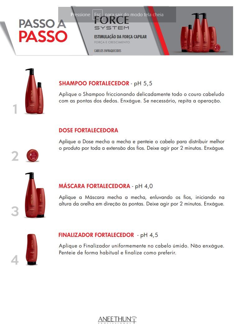 Kit Aneethun Force System Shampoo 1L + Máscara 1L + Finalizador 250g