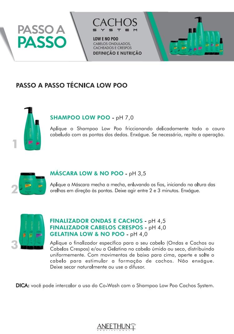 Kit Aneethun Oleo Low No Poo Cachos System E Máscara Cachos