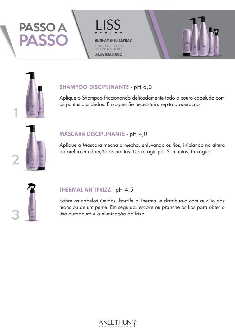 Kit Shampoo e Máscara Home Care Aneethun Liss System 250g