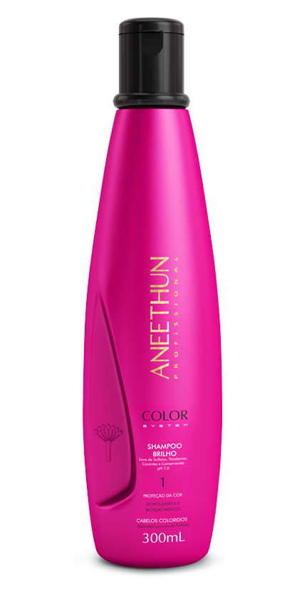 Shampoo de Brilho Aneethun Color System 300ml