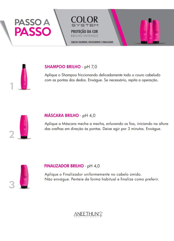Shampoo de Brilho Aneethun Color System 300ml