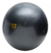 Bola de Ginástica Fit Ball Training 55cm - Pretorian