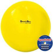 Gynastic Ball 45cm - Carci