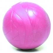 Brinquedo Furacão Pet Bola Maciça - Rosa