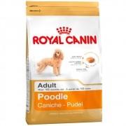 Ração Royal Canin SBN Adult para Cães Adultos da Raça Poodle