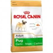 Ração Royal Canin SBN Adult para Cães Adultos da Raça Pug