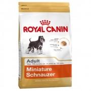 Ração Royal Canin SBN Adult para Cães Adultos da Raça Schnauzer Miniatura