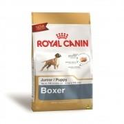 Ração Royal Canin SBN Junior para Cães Filhotes da Raça Boxer
