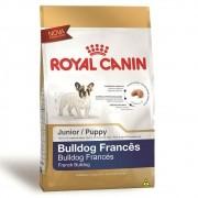 Ração Royal Canin SBN Junior para Cães Filhotes da Raça Bulldog Frances