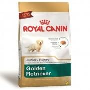 Ração Royal Canin SBN Junior para Cães Filhotes da Raça Golden Retriever