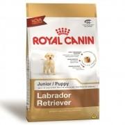 Ração Royal Canin SBN Junior para Cães Filhotes da Raça Labrador Retriever