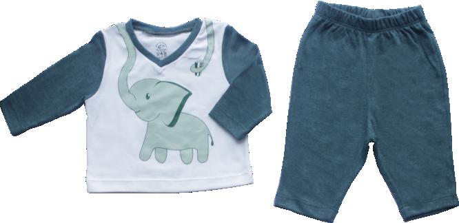 Pijama Masculino Amigos da Natureza Elefante Pequeno