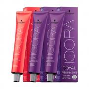 Kit 1 Coloração Igora Royal 8-77 e 2 Igora L-77