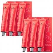 Kit 4 Coloração Igora Royal 8-0 + 2 Igora Royal 8-77