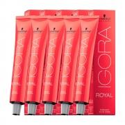 Kit 5 Igora Royal 8-00 Louro Claro Natural Extra + BRINDE