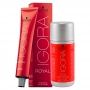 Kit 1 Coloração Igora Royal 7-1 e 1 ox 20 Vol 60 ml
