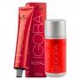 Kit 1 Coloração Igora Royal 1-0 e 1 ox 20 Vol 60 ml