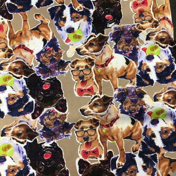 Oxford Estampado com estampa de cachorro 1,40 Largura 100% Poliéster