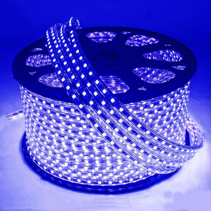 Mangueira Chata 140w / Bi-Volt Ultra Intensidade A prova d'água LED Azul Rolo 100m