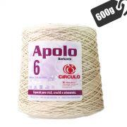 Barbante Cru Apolo 4/6 600g 627mts Círculo S/A