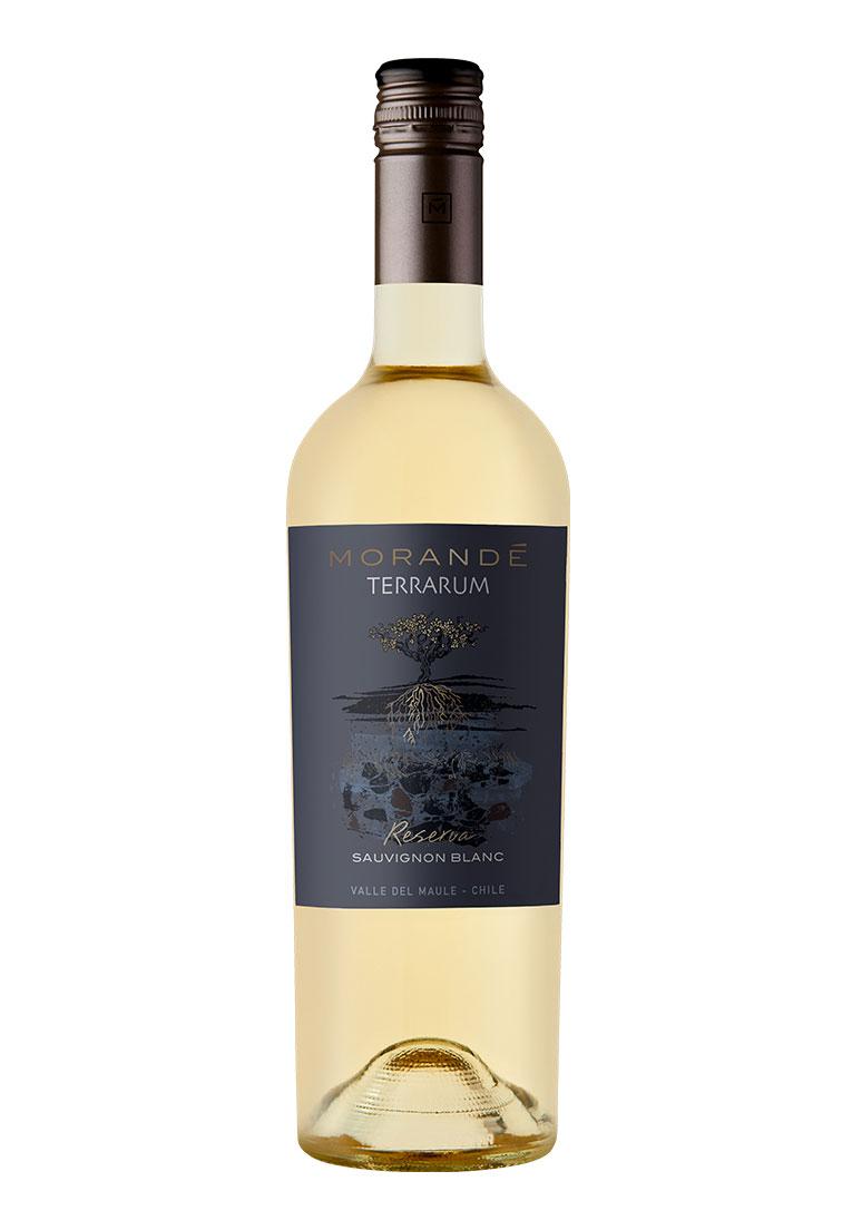 Morandé Terrarum Reserva Sauvignon Blanc 2020
