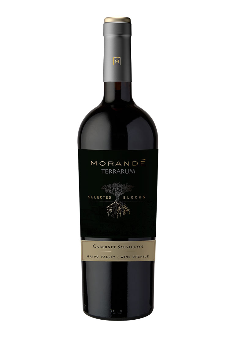 Morandé Terrarum Selected Block Cabernet Sauvignon 2019
