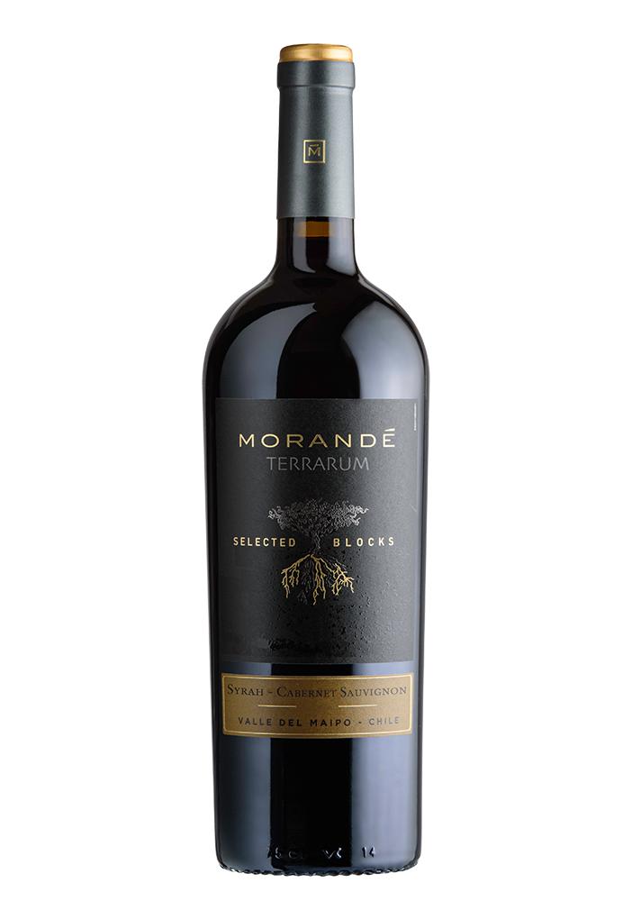 Morandé Terrarum Selected Block Syrah/Cabernet Sauvignon 2019