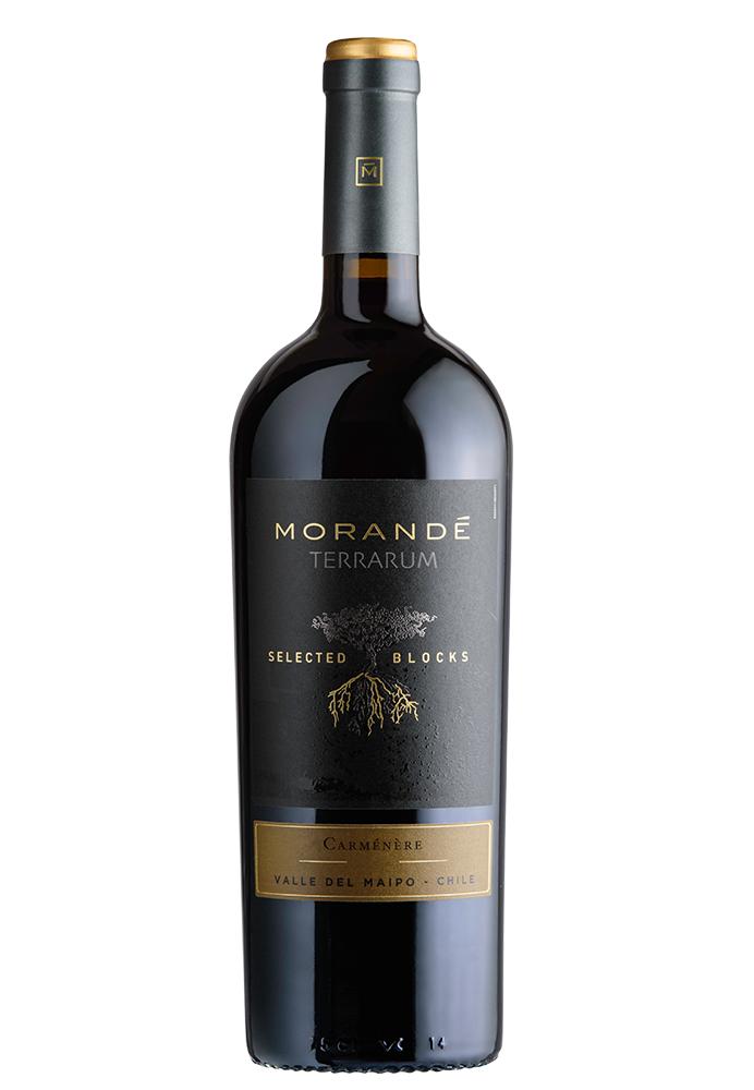 Morandé Terrarum Selected Blocks Carmenere 2019