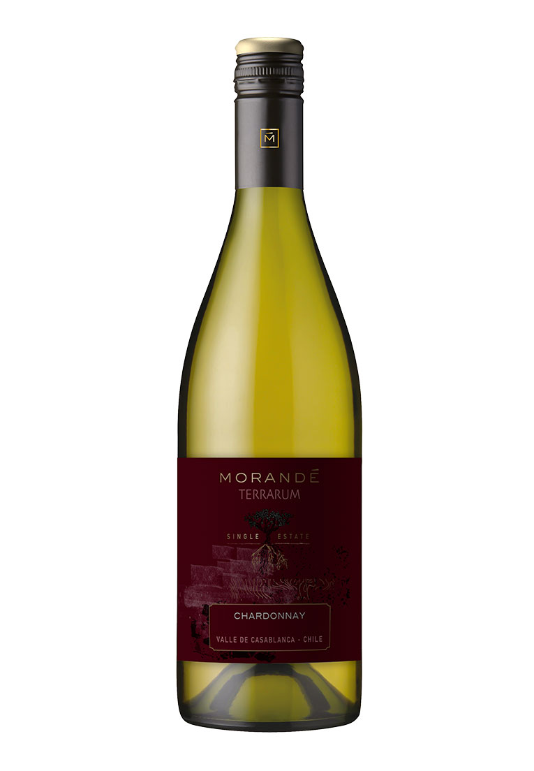 Morandé Terrarum Single Estate Chardonnay 2019