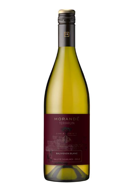 Morandé Terrarum Single Estate Sauvignon Blanc 2020