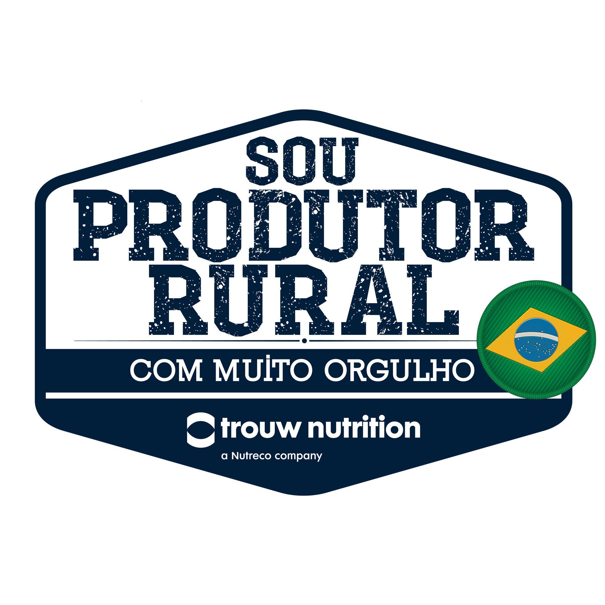 Adesivo Bandeira Brasil