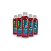 Caixa com 16 Bio Coolant Rosa Concentrado 1L RADIEX