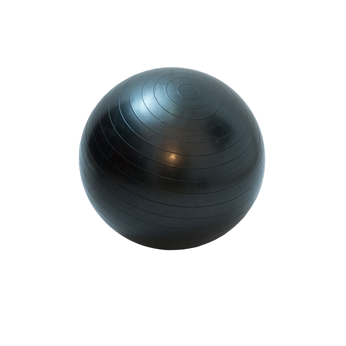 Bola de Ginástica e Pilates 55cm c/ Bomba de Ar - Wellness