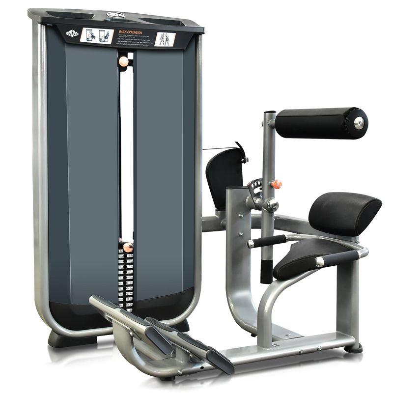 Back Extension VITA - 180 lbs (81 kg)