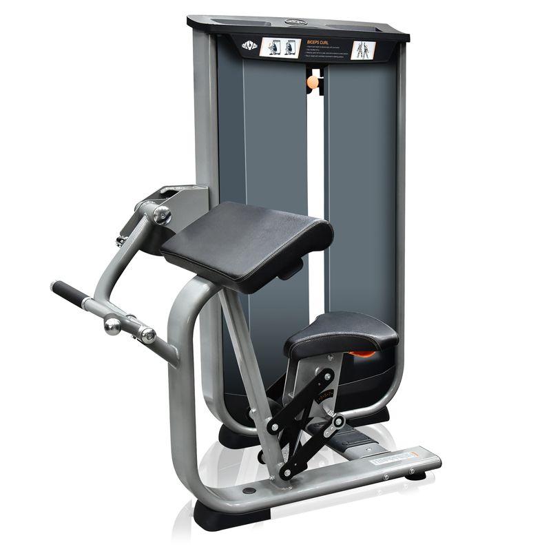 Biceps Curl VITA - 150 lbs (68 kg)