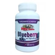 Blueberry Mirtilo 120 Cápsulas 500mg - Rei Terra