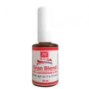 Gran Blend - Canela Gengibre Hortela Semente De Uva Cravo 10ml - RHR